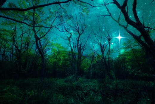 Starlit forest of beautiful green and turquoise.